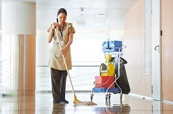 Floor Cleaning SW3
